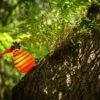 oo_fat-gonzo_orange-with-stripes_summerevent_BorOut160703-7318