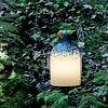 oo_rico-fat_light-object_blue-white_GK_DSC04314_korrBB