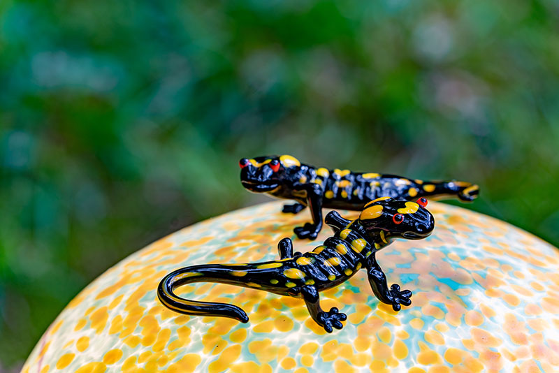 SHROOMS | Salamander auf Lichtobjekt Pilz